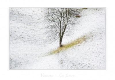 ©kai Jensen gallerikj.no
